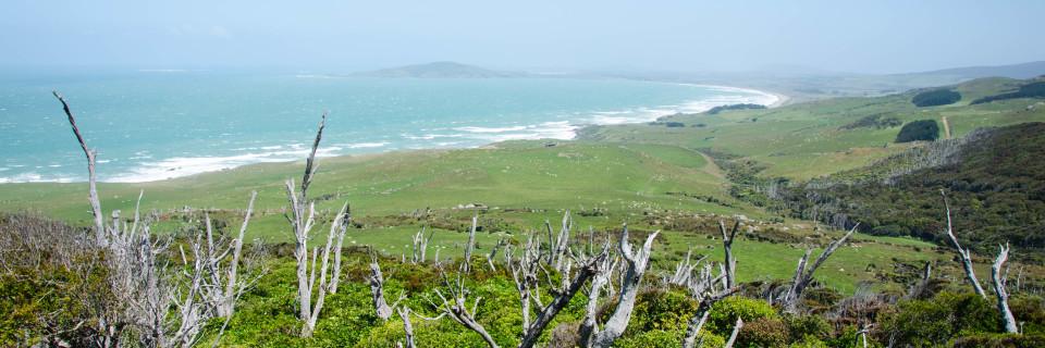 Invercargill und Stewart Island